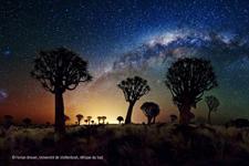 Comment est organisé l'Univers
